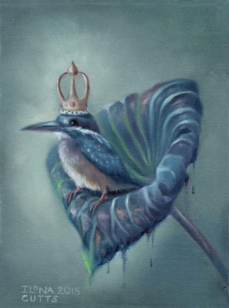 King Colibri 2015