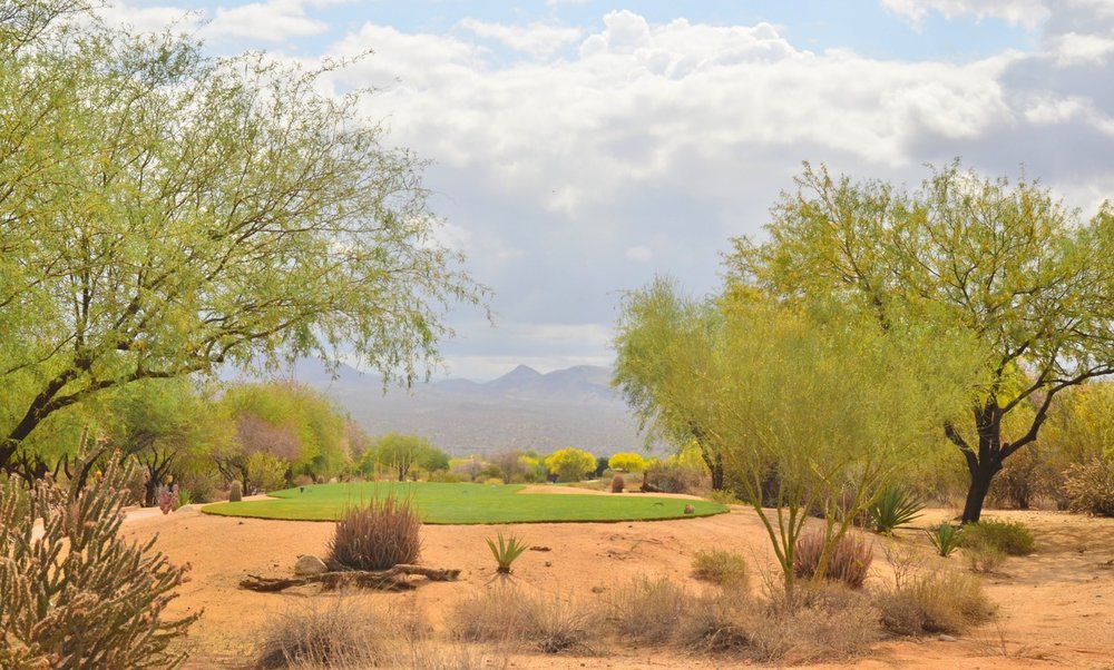 This is a picture of one of the tees on the golf course with the Verde mountains in the background. I don't play golf (yet), but the course is so beautiful, I might have to take it up after my back surgery.