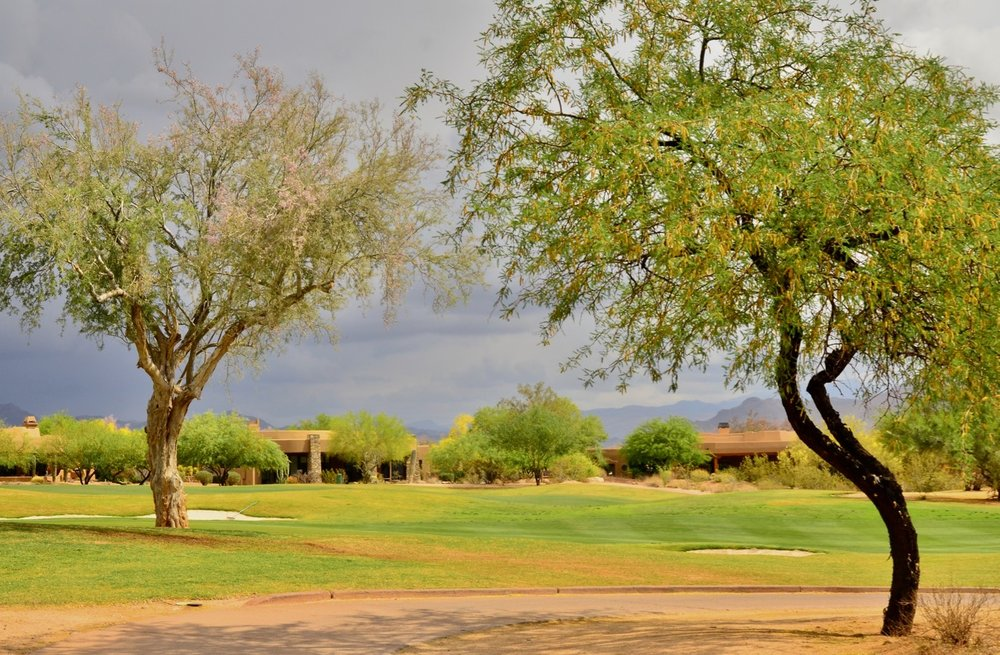 Looking across one of the fairways at the Verde mountains.