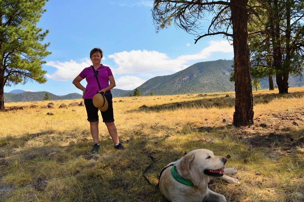 Claudia and Tuck in Buffalo Park, Flagstaff, AZ. Tuck loved it…lots of great sticks to chew. But also lots of small briars and cactus…which he stepped on right after I took this picture.