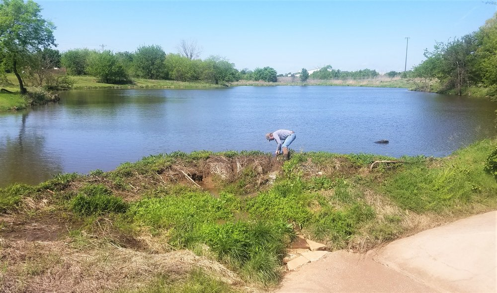 Pond Protection - Many animals can cause problems with ponds, the most common of which is the beaver. Beavers can destroy native and ornamental trees, clog spillways and undermine dams. Gophers can also cause major holes in dams and along shorelines. Our Nuisance Wildlife Control Officer can assist with these animal issues and more.