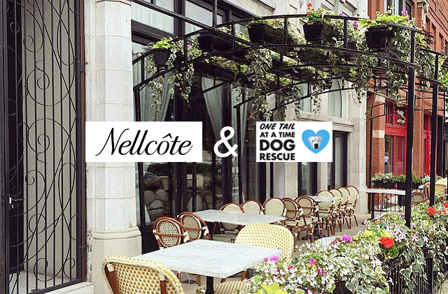 Ring in Dog Restaurant Week weekend with Nellcôte and 'za at their DRW kickoff happy hour from 3-5 Sunday. We'll also have One Tail at a Time merchandise and awesome goodie bags from Kriser's Natural Pet! During this dog-friendly happy hour, and throughout Dog Restaurant Week, Nellcôte generously donates $2 from each pizza sold to One Tail at a Time. They are the best, and so is their PIZZA!