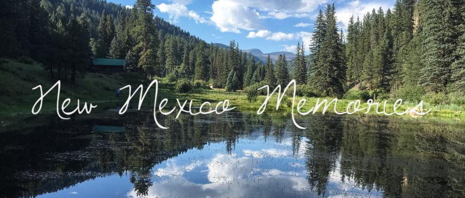 New Mexico State Park || Rachel Loewens