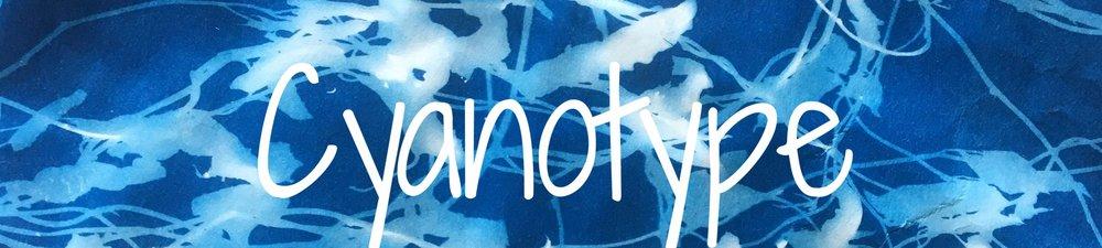 Cyanotype || Rachel Loewens