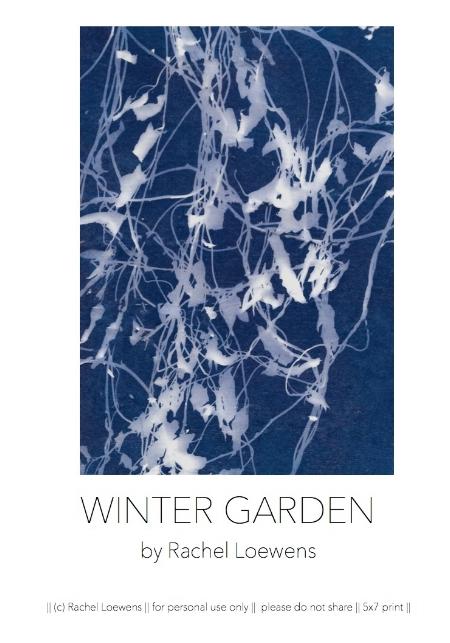 Winter garden || available for instant download || Rachel Loewens