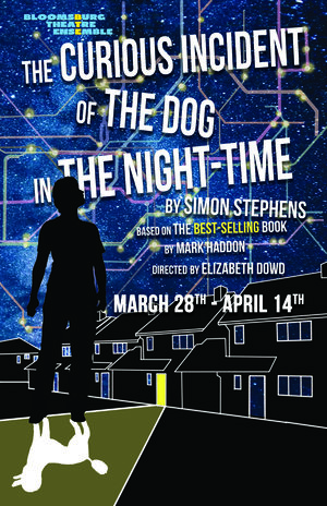 """Cover of the play """"The Curious Incident Of The Dog In The Night-Time""""."""