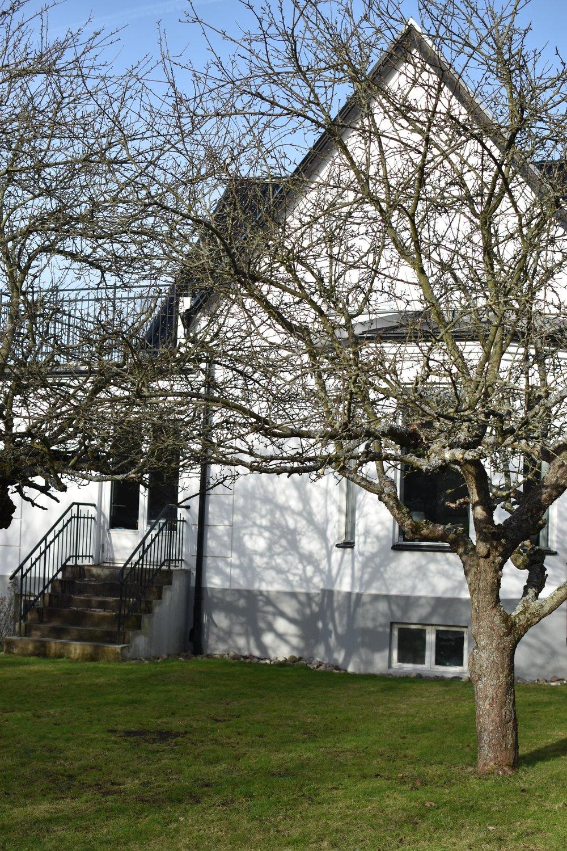 Gamla, gamla äppelträd i stort behov av beskärning...Känns som att helgens projekt är givet om vädret håller i sig.