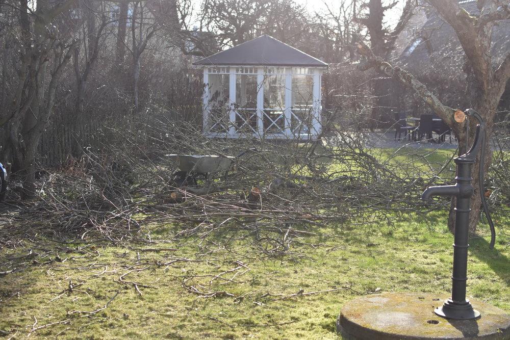 """Trädgården ser lite """"risig"""" ut eller? Blir nog några vändor tilltippen I helgen."""