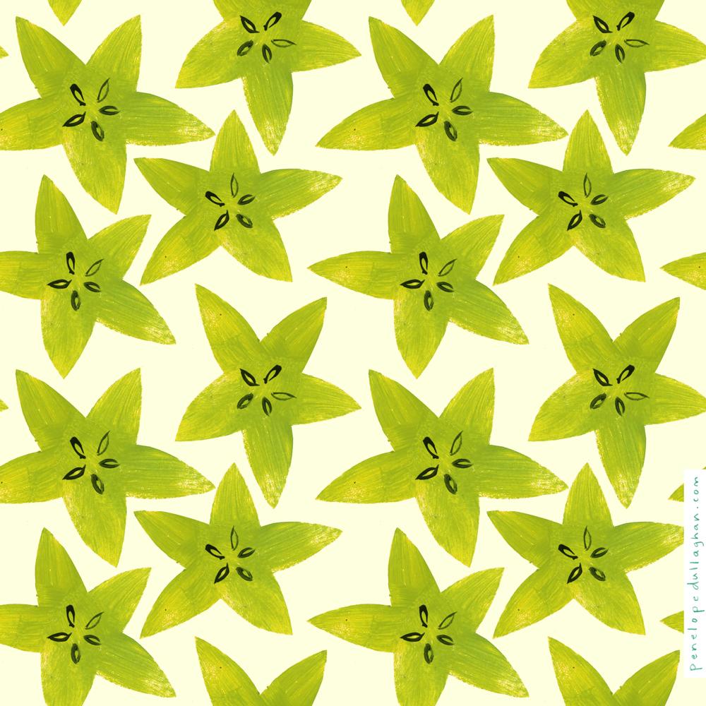 starfruit_penelopedullaghan.jpg
