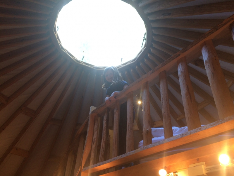 penelope dullaghan - yurt adventure - looking up