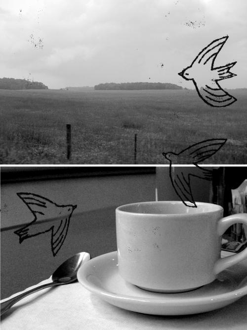 cloudsinmycoffee.jpg