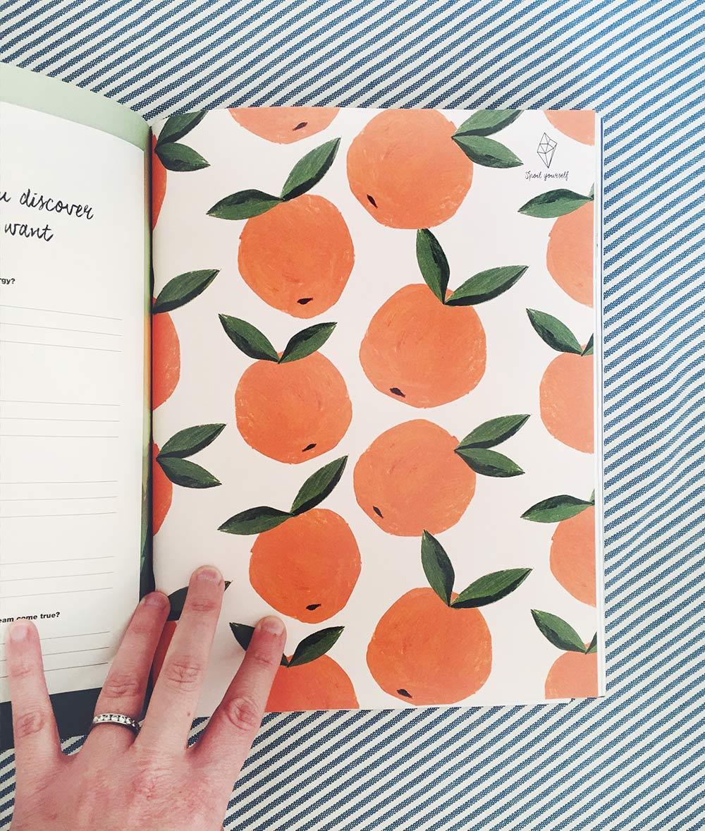 fruitpatterns_flow_penelopedullaghan_cover.jpg