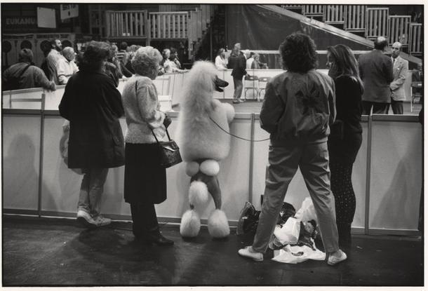 1991, EliottErwitt.jpg