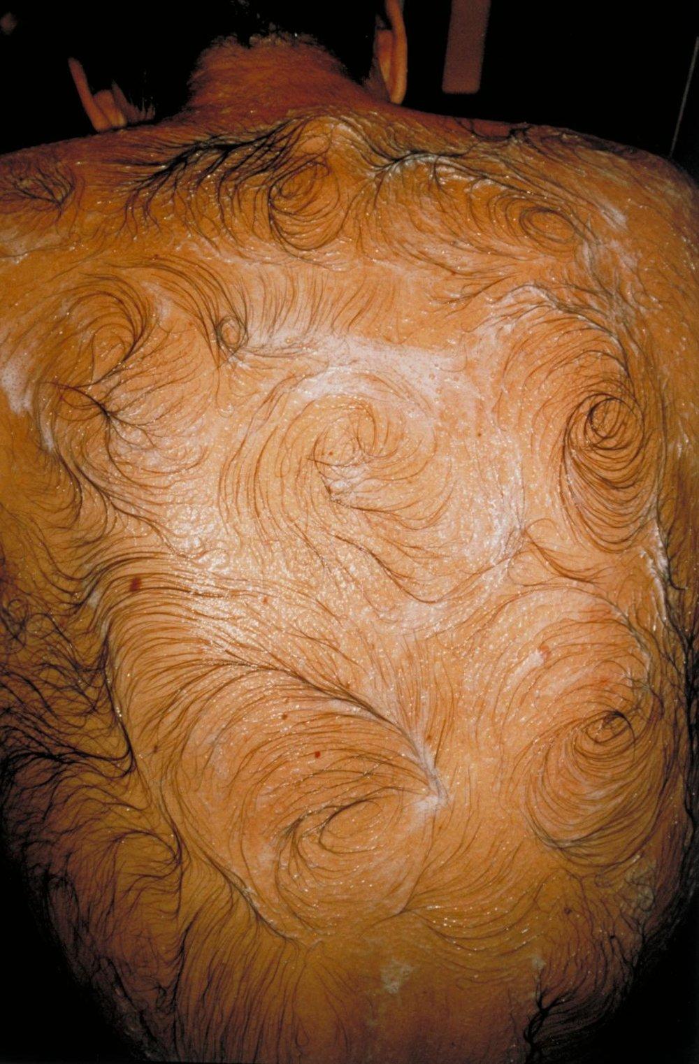 1995, Mona Hatoum, Van Gogh's Back.JPG