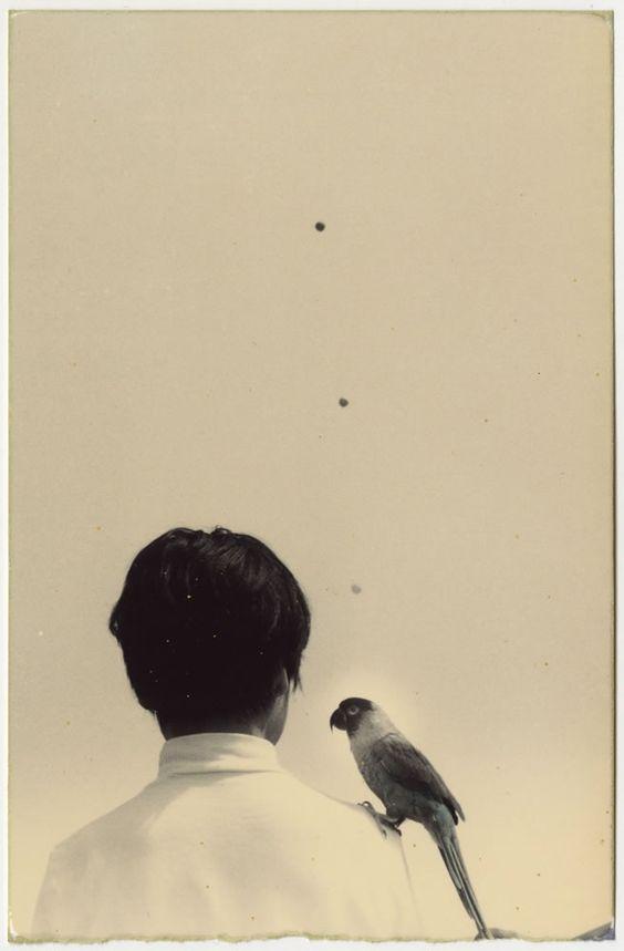 1998, Masao Yamamoto, A box of KU.jpg