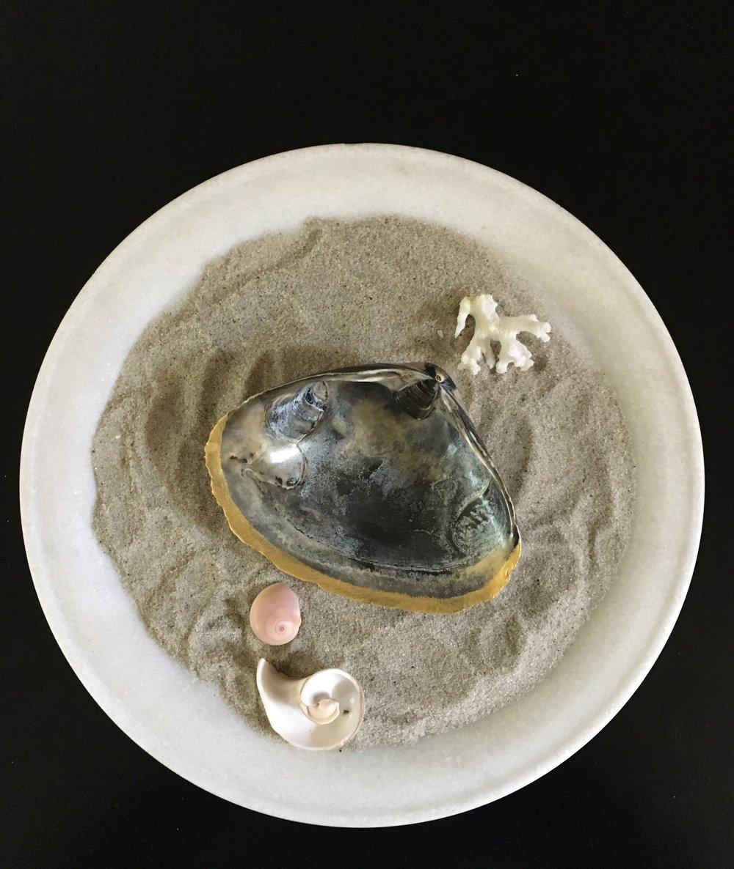 Jumbo shell