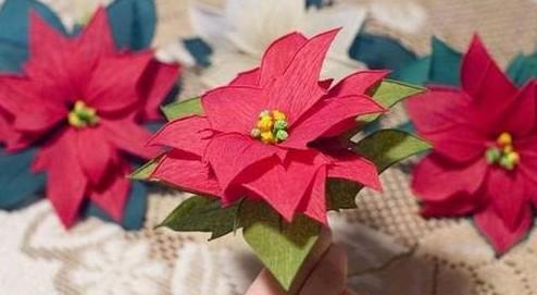 Crepe Paper Poinsettia Flower