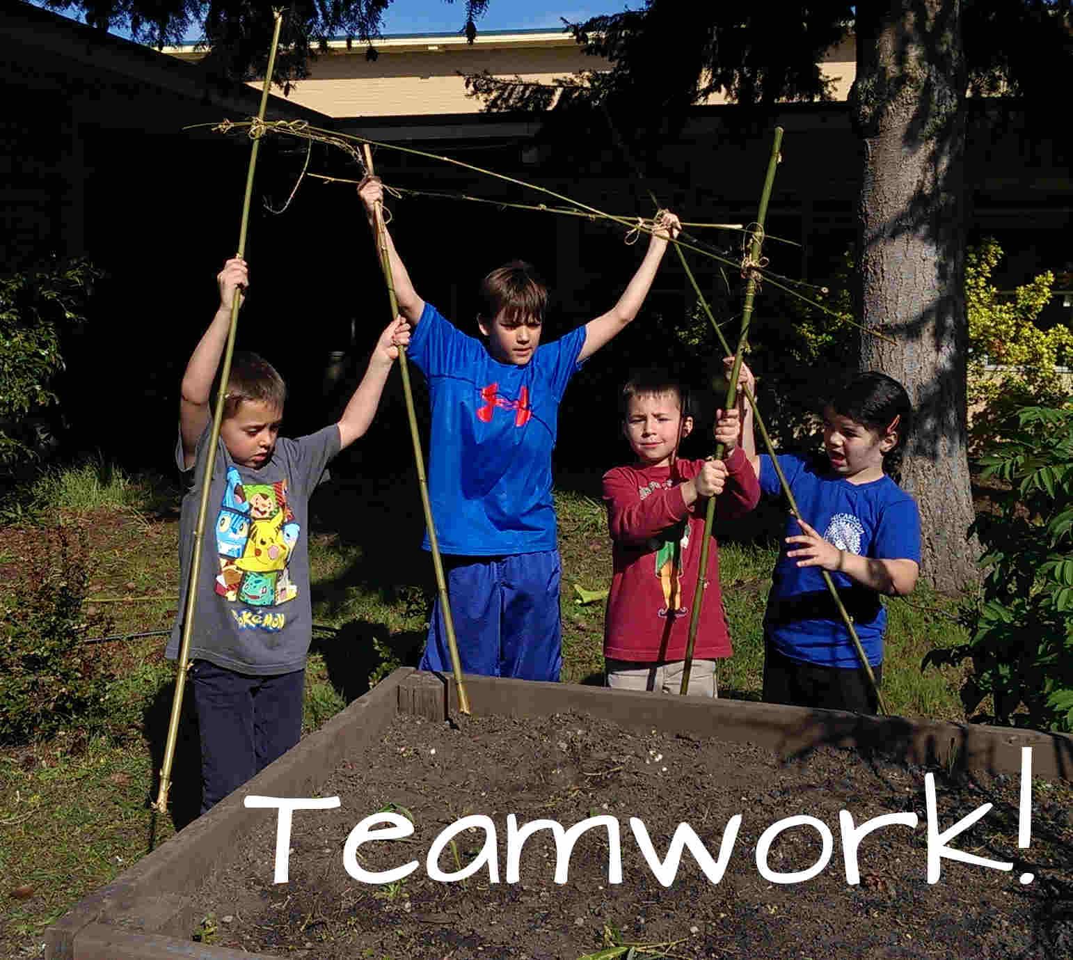 bamboo teamwork