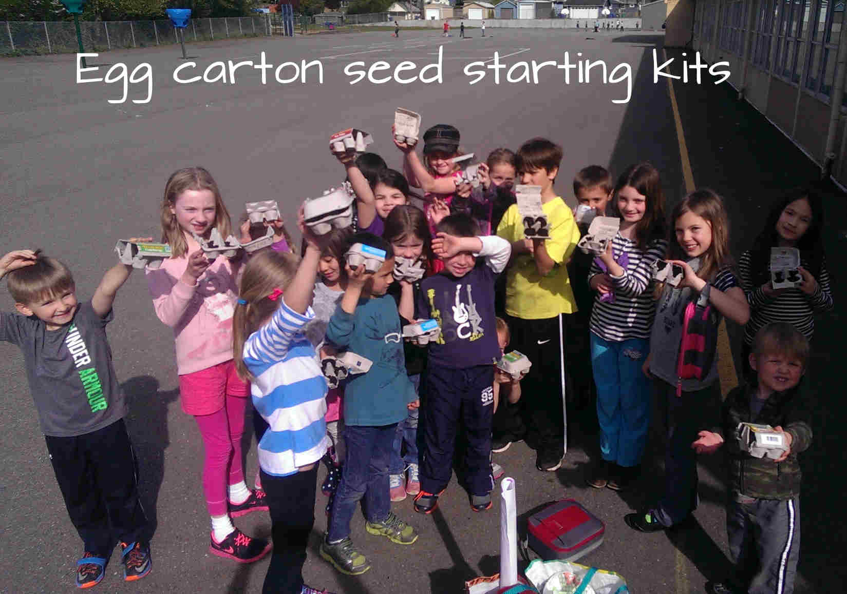 egg carton seed starting kits