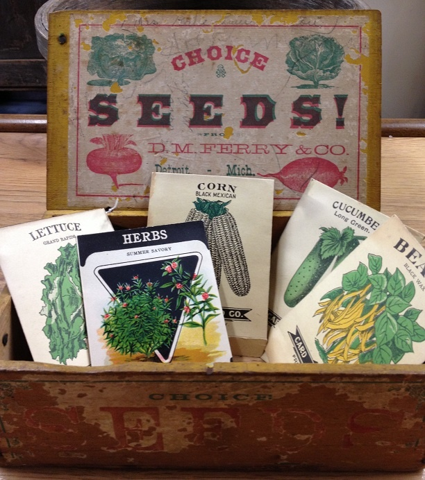 seed-box.jpg