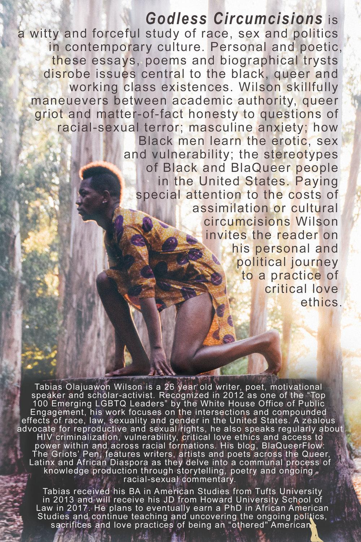 back cover FINAL (1).jpg