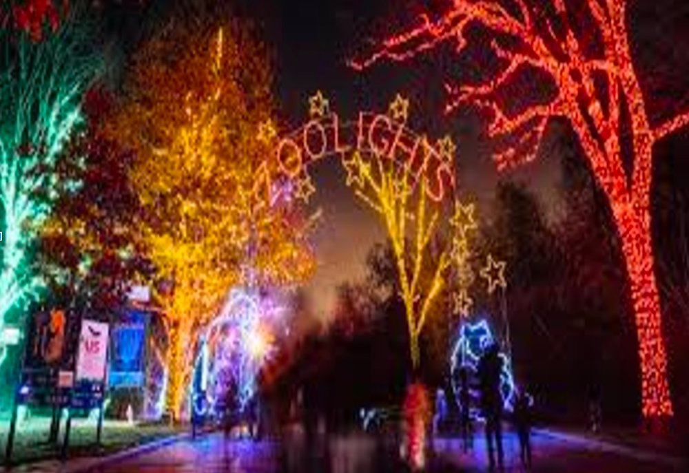 Smithsonian's National Zoo Light Tree Washington DC
