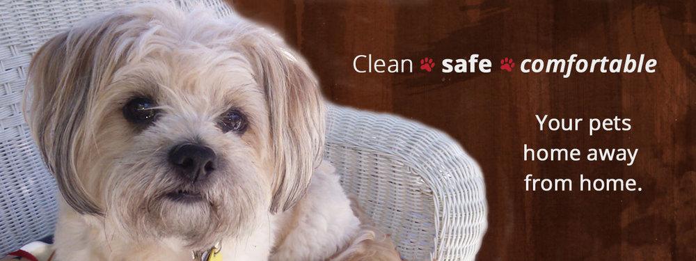 Dog-Daycare-Rochester-NY-boarding-banner2-.jpg