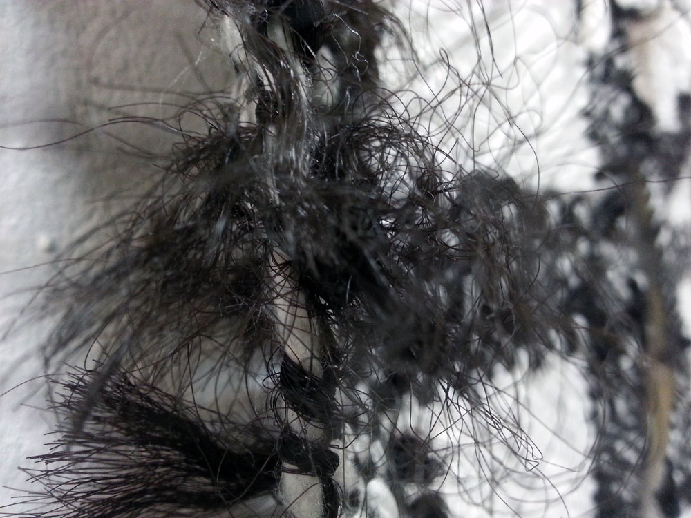 """Good"" Hair (detail)"