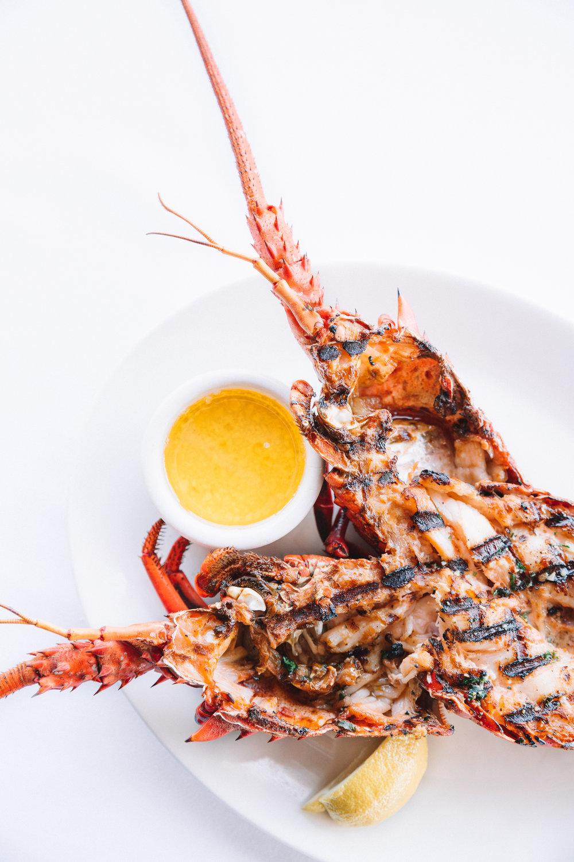 The Lobster-62.jpg