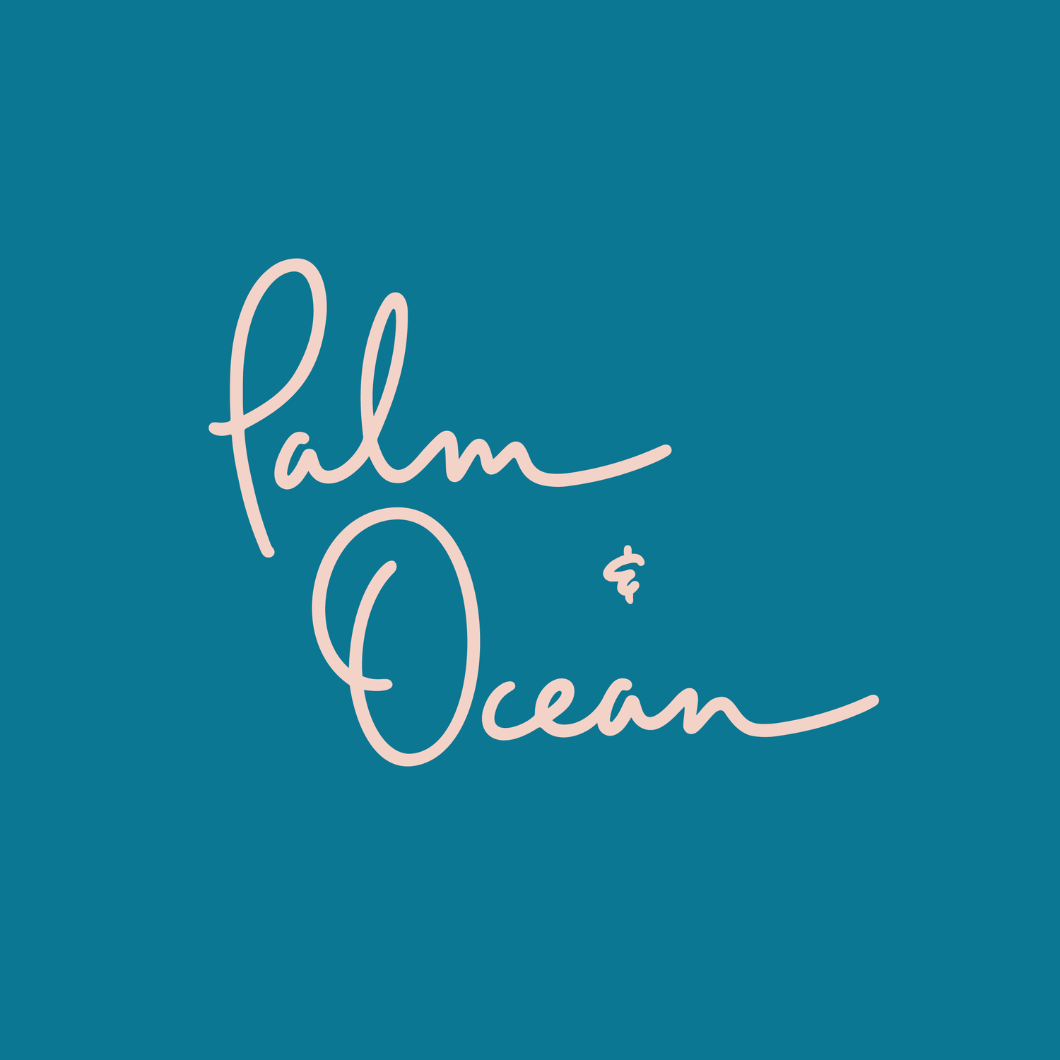 Palm + Ocean Digital Marketing