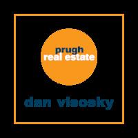 Dan_Visosky_Logo (2).png