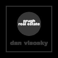 Dan_Visosky_Logo -GRAY.png