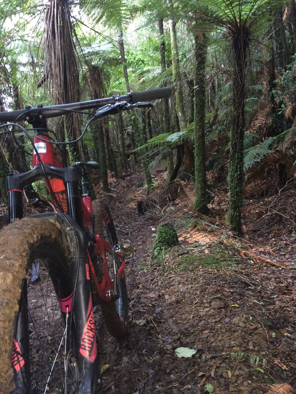 Technical, damp, dark, native, quiet, loamy, slippery and fun. If that sounds like you, then the Akas is your kind of place.