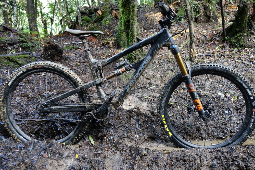 Ali Quin's Zerode Taniwha.       Photo : therodfather   Dopers Bog, Akatarawas.