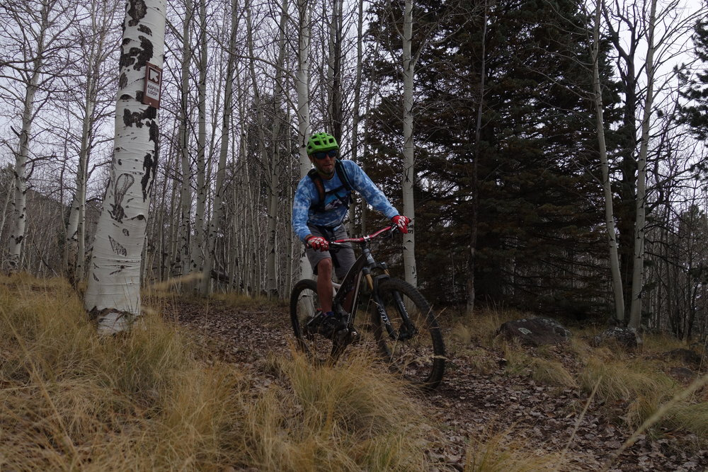 Local rider Dan, a friend of a friend, was roped in to show us the Alpine meadows and forest of Flagstaff.