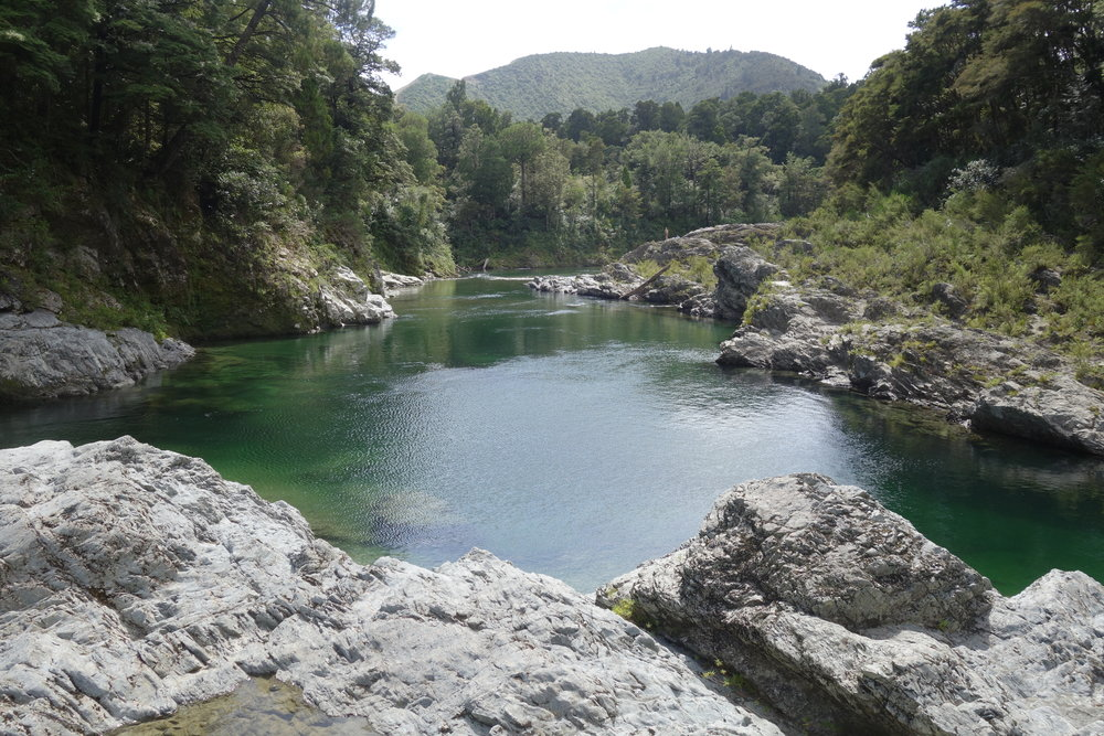 Homeward bound, stopping at Pelorus bridge for an amazing swim in deep clear water.