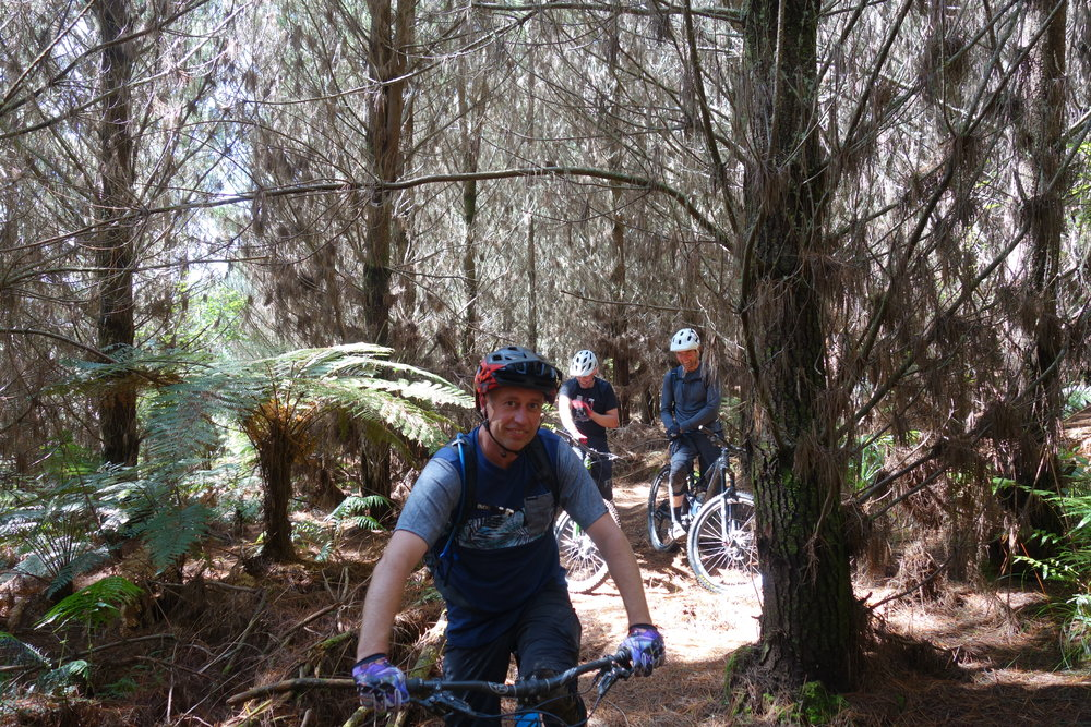 This is the real reason why I ride bikes..quality time in the forest with good mates. Jeff Carter , Aaron Baddiley and Mike Spanbroek.
