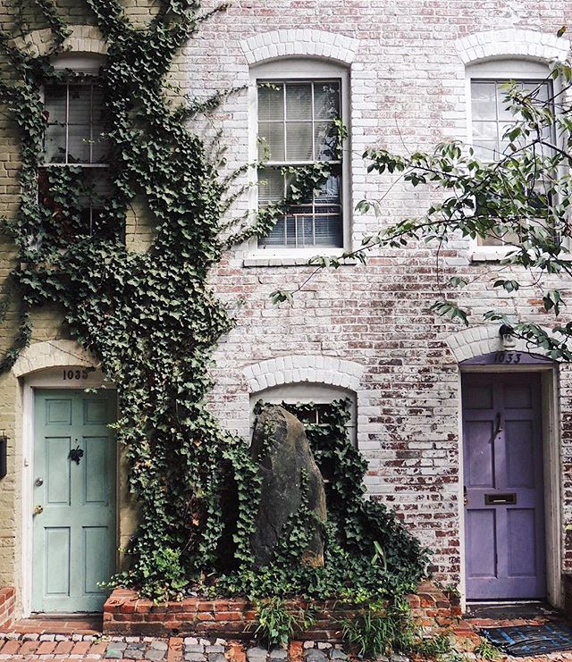 Georgetown gems 💚💜
