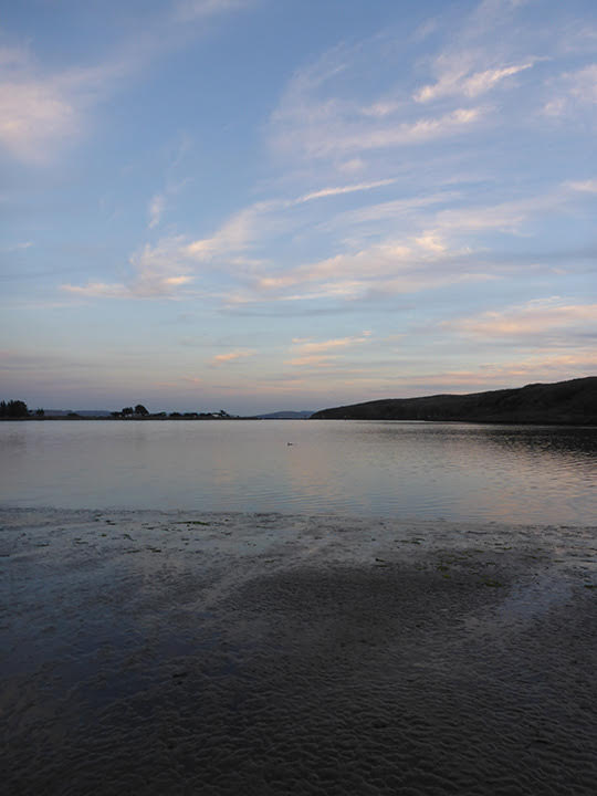 Sunset at the last of our sites, Bodega Bay, for the Fall coastal eDNA Bioblitz.