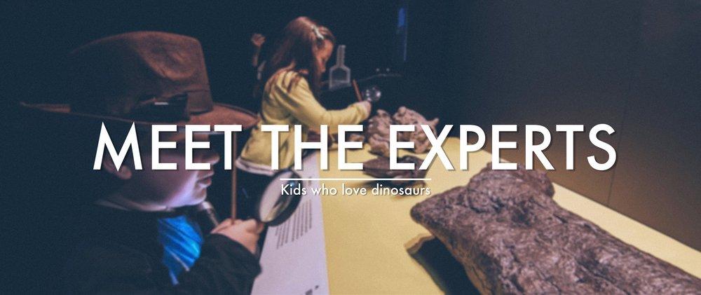 MEET-THE-EXPERTS.jpg