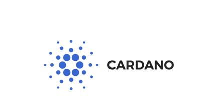 Cardano logo at Worknb.com