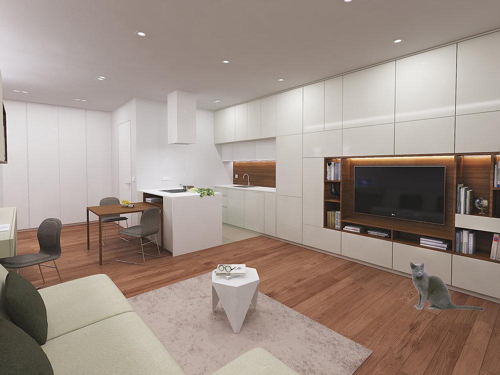 interior-Tina Rugelj_AP G_dnevna soba-living room_kuhinja-kitchen_03.jpg