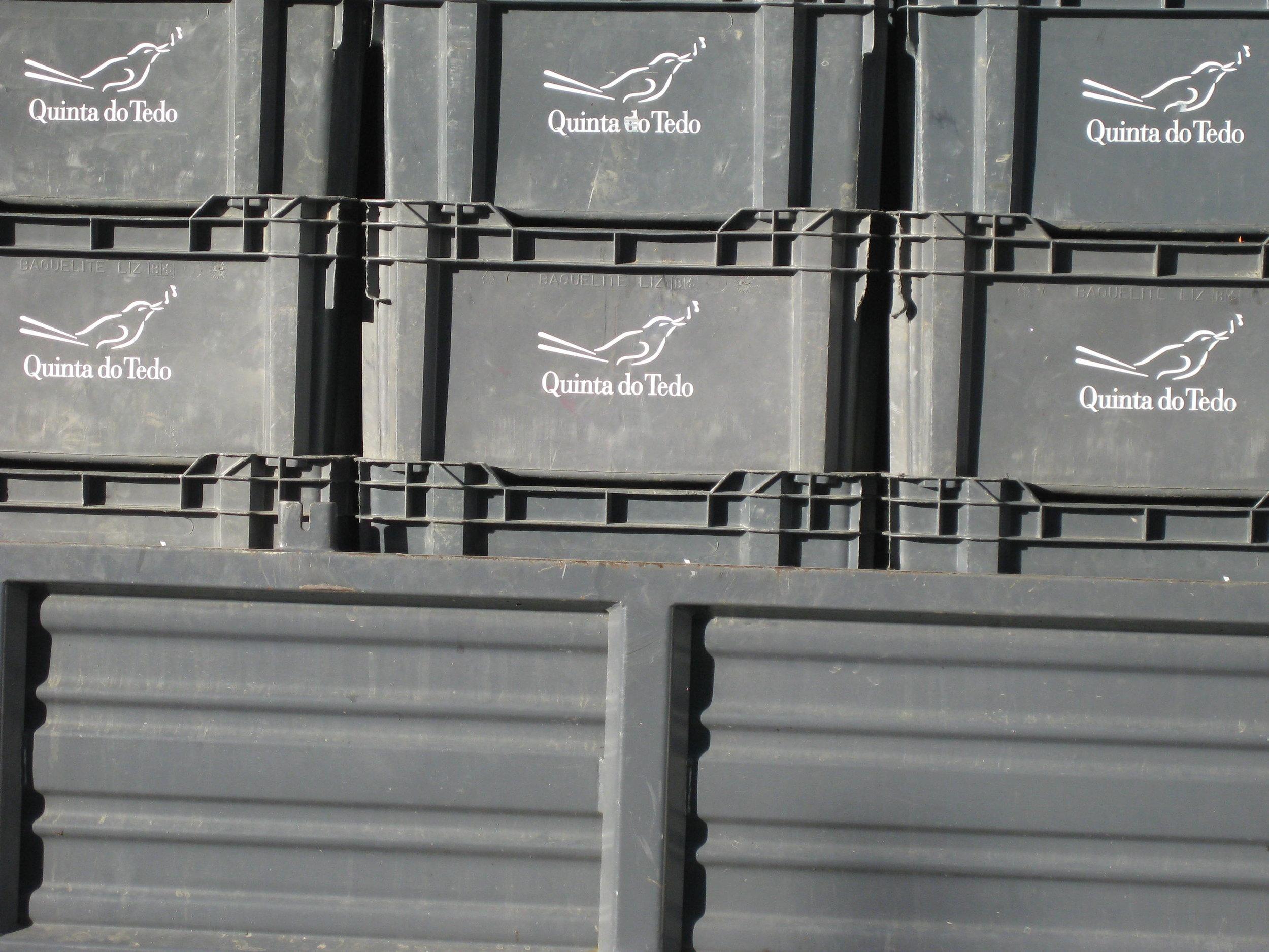 Les caisses en plastique prêtes à aller sur des terrains plus plats