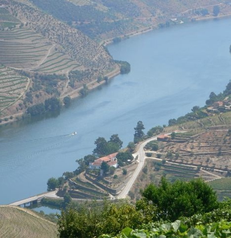 Douro View from Maramalal - Version 3