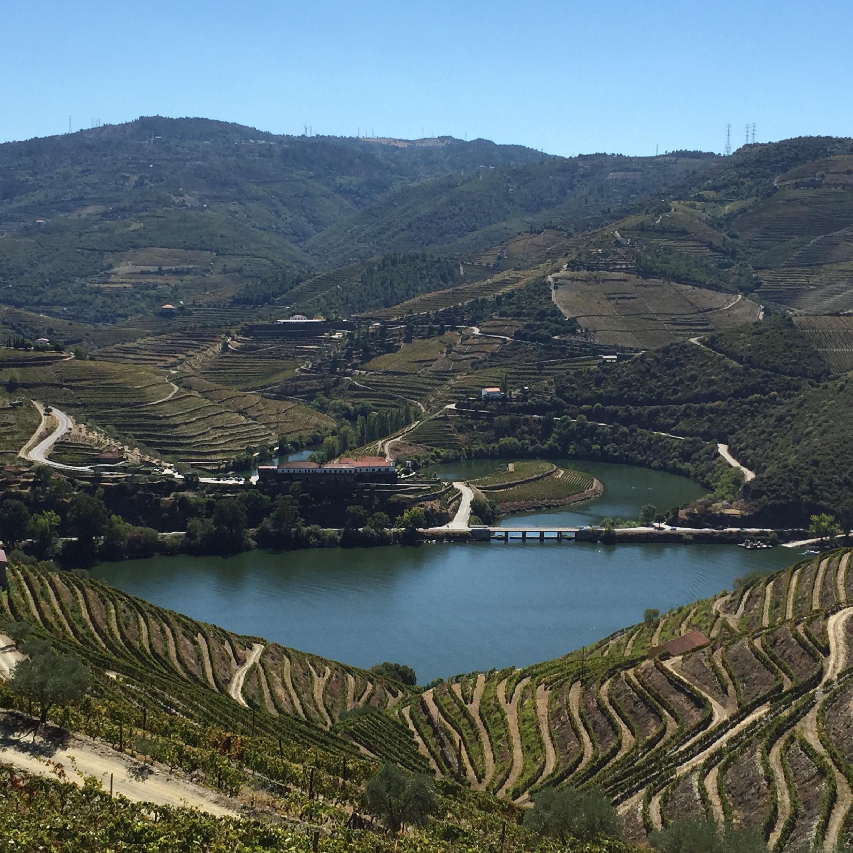 La vallée du Tedo et le Douro.