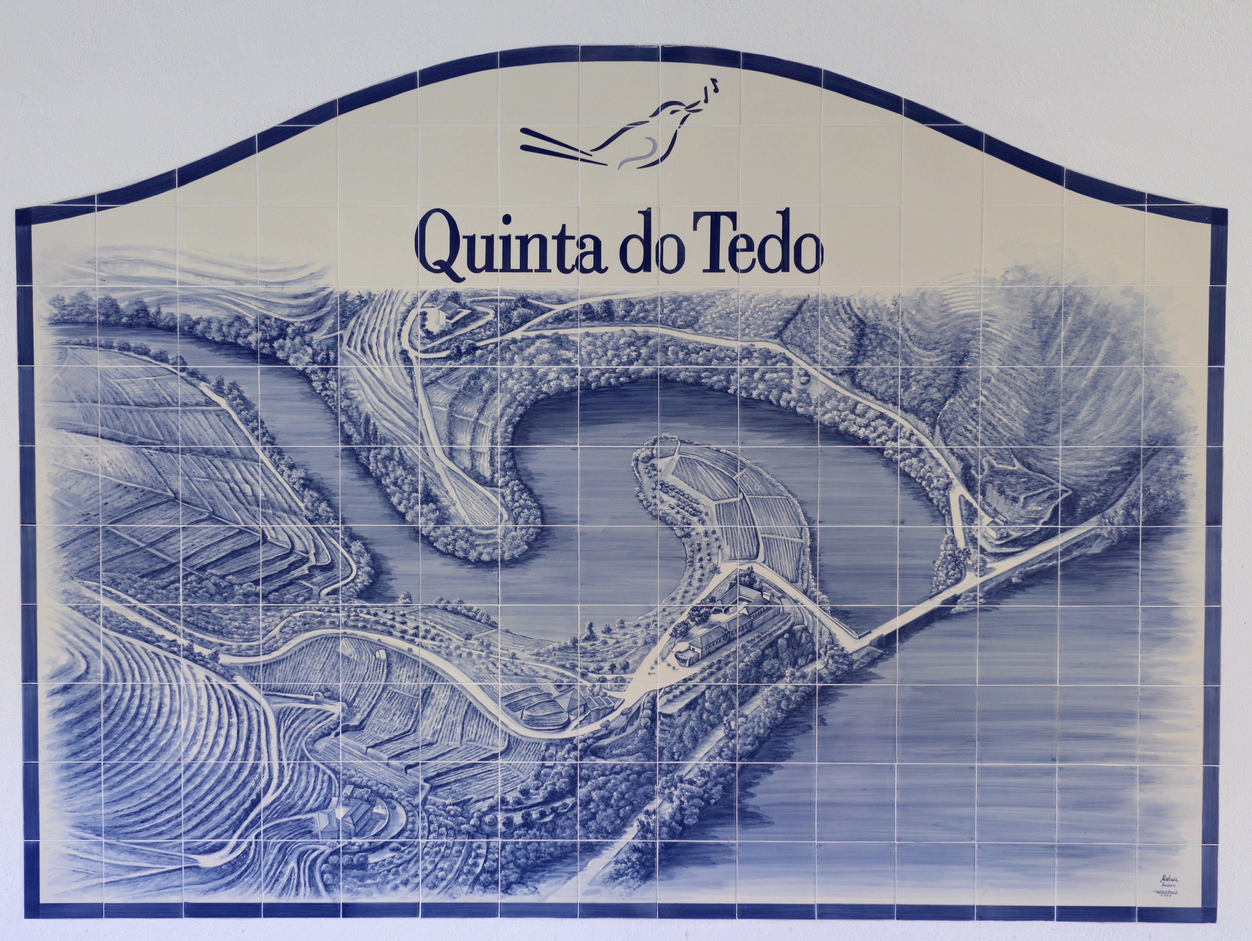 Aerial view of Quinta do Tedo.