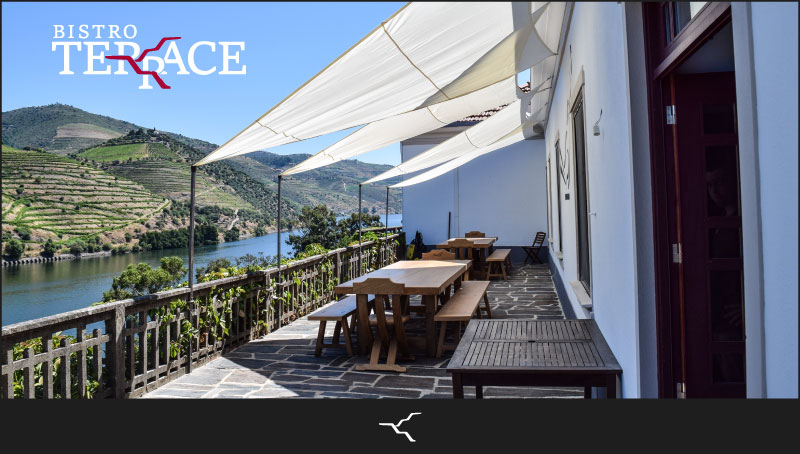 Bistro_newsletter__terrace_IMAGE