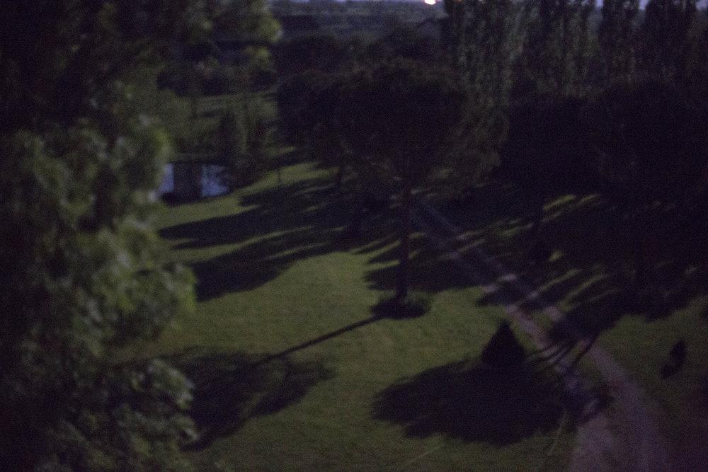01Moonshadows.jpg