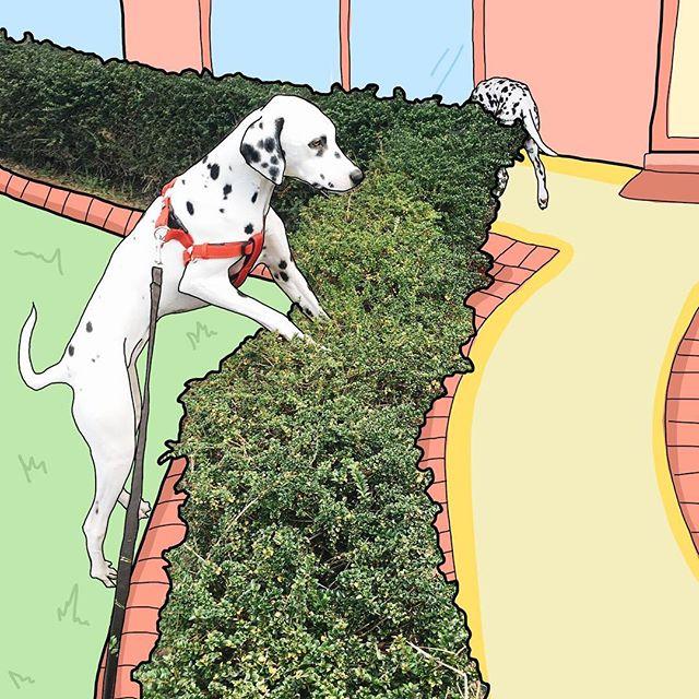 Gardening pups 🌿🍃