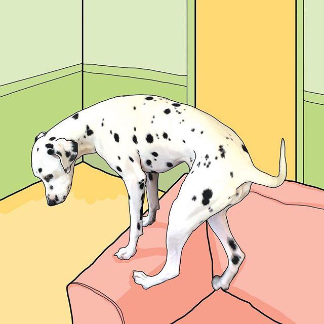 Mid climb 🏔✨ . . . . . . . #Dalmatian #dalmatians #colour #color #illustration #cartoon #green #yellow #pink #peach #lineart #vector #dog #dogsofinstagram #dalmatiansofinstagram #featuremydalmatian